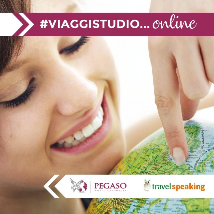 viaggi studio online